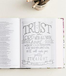 NIV Beautiful Word Coloring Bible for Teens